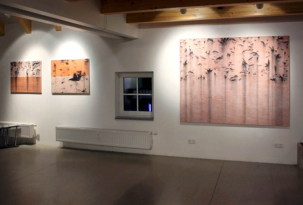 2012 Galerie H, Enns
