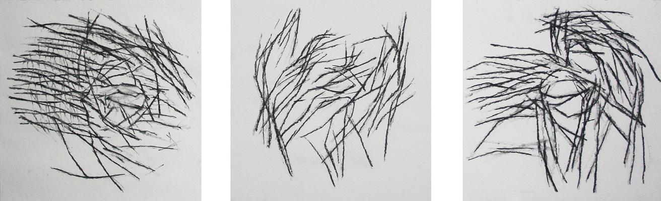 Auge, Kohle auf Papier, je 30 x 40 cm 2013