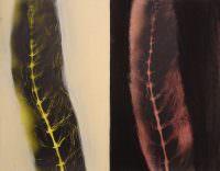 Parallel I, 2007, Kohle, Acryl, Papier, 70 x 85 cm