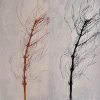 Parallel III, 2007, Kohle, Acryl, Leinwand, 50 x 50 cm