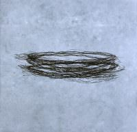 Seismoschale, 2010, Kreide, Pigment, Papier, á 35 x 33 cm