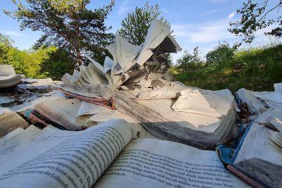 Gerlinde Thuma  und Andreas J. Obrecht Eine Wissen-Wellen-Skulptur: Wozu wir gewußt haben werden Symposium Wachtberg 2020